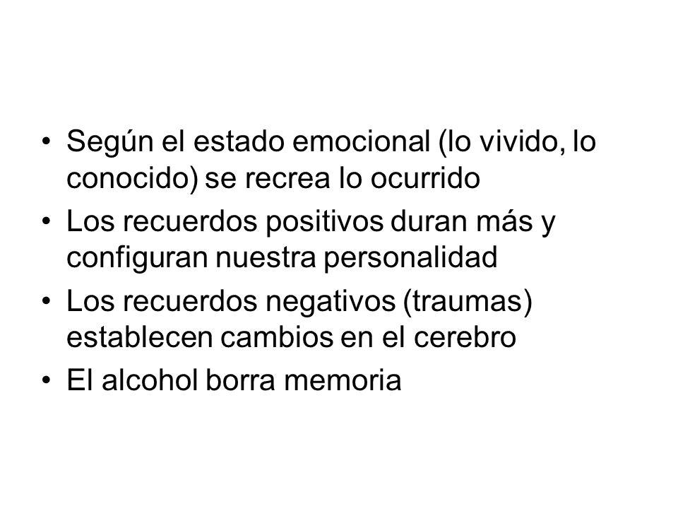 Según el estado emocional (lo vivido, lo conocido) se recrea lo ocurrido Los recuerdos positivos duran más y configuran nuestra personalidad Los recuerdos negativos (traumas) establecen cambios en el cerebro El alcohol borra memoria