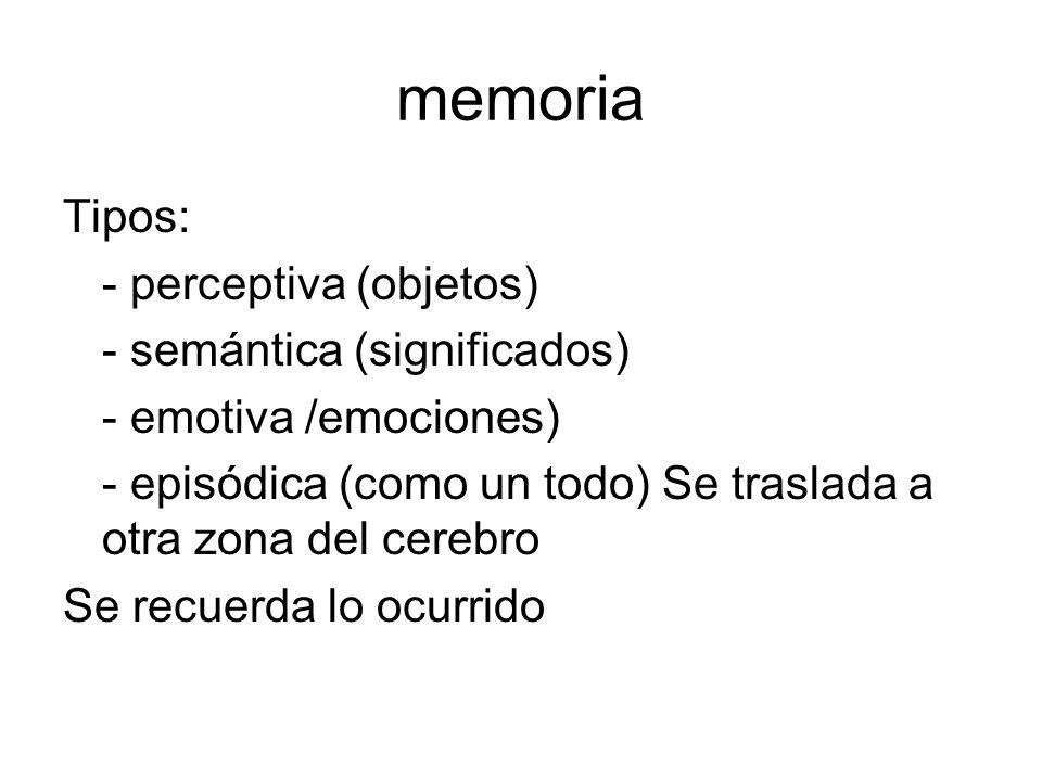 memoria Tipos: - perceptiva (objetos) - semántica (significados) - emotiva /emociones) - episódica (como un todo) Se traslada a otra zona del cerebro Se recuerda lo ocurrido
