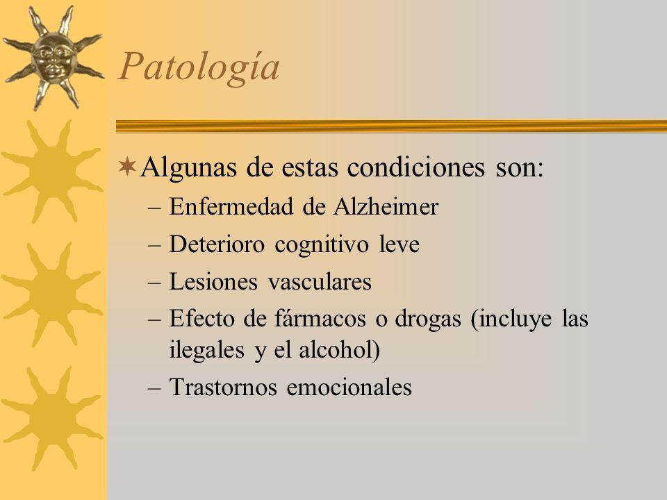 Patología Algunas de estas condiciones son: –Enfermedad de Alzheimer –Deterioro cognitivo leve –Lesiones vasculares –Efecto de fármacos o drogas (incluye las ilegales y el alcohol) –Trastornos emocionales