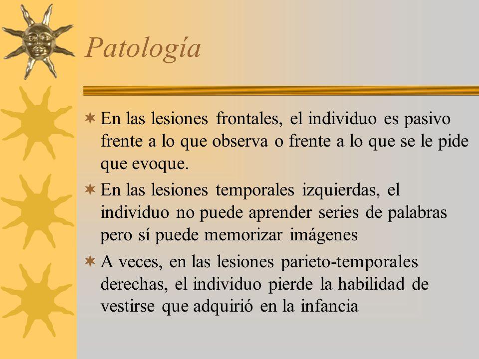 Patología En las lesiones frontales, el individuo es pasivo frente a lo que observa o frente a lo que se le pide que evoque. En las lesiones temporale