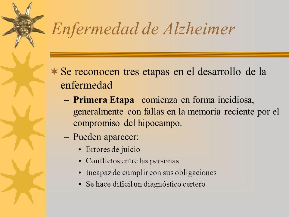 Enfermedad de Alzheimer Se reconocen tres etapas en el desarrollo de la enfermedad –Primera Etapa comienza en forma incidiosa, generalmente con fallas en la memoria reciente por el compromiso del hipocampo.