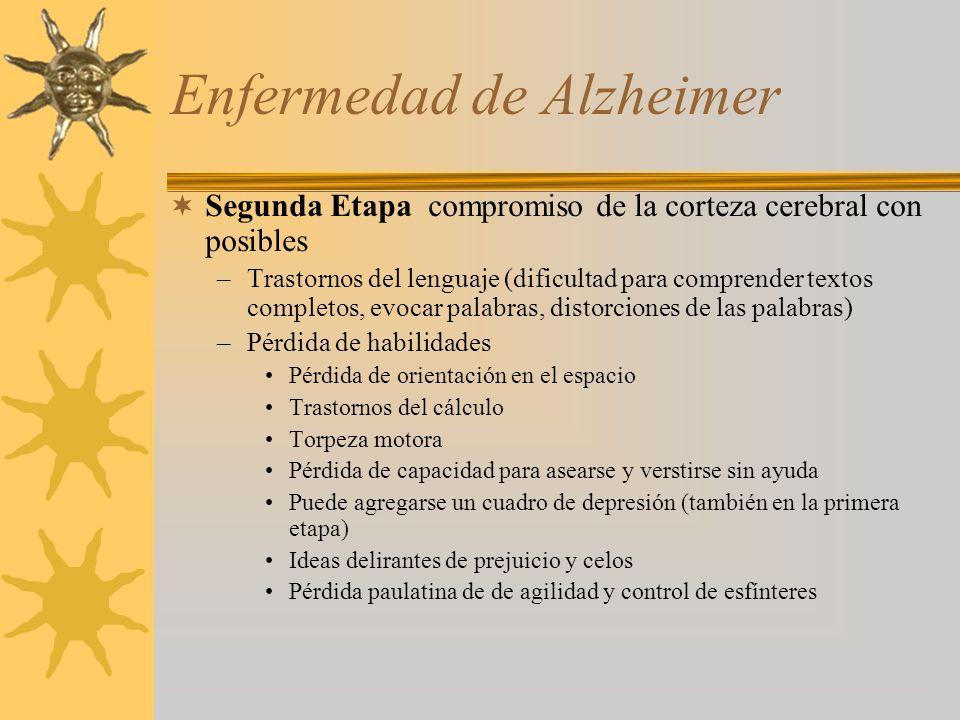 Enfermedad de Alzheimer Segunda Etapa compromiso de la corteza cerebral con posibles –Trastornos del lenguaje (dificultad para comprender textos compl