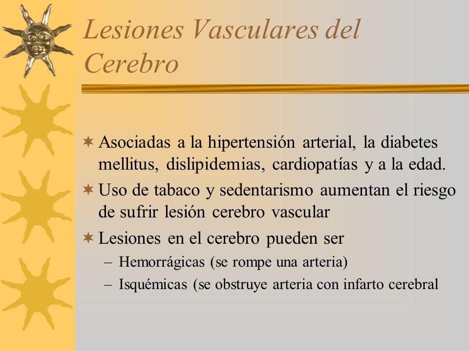Lesiones Vasculares del Cerebro Asociadas a la hipertensión arterial, la diabetes mellitus, dislipidemias, cardiopatías y a la edad.