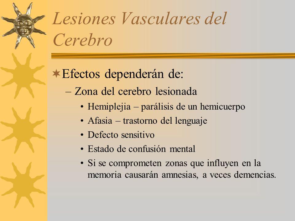 Lesiones Vasculares del Cerebro Efectos dependerán de: –Zona del cerebro lesionada Hemiplejia – parálisis de un hemicuerpo Afasia – trastorno del leng