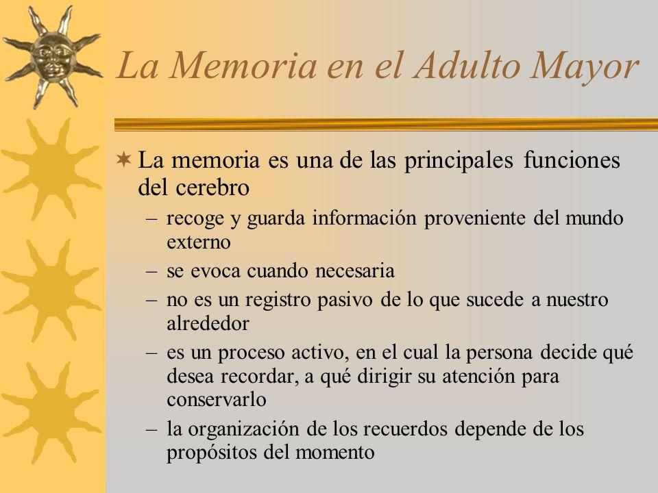 La Memoria en el Adulto Mayor La memoria es una de las principales funciones del cerebro –recoge y guarda información proveniente del mundo externo –se evoca cuando necesaria –no es un registro pasivo de lo que sucede a nuestro alrededor –es un proceso activo, en el cual la persona decide qué desea recordar, a qué dirigir su atención para conservarlo –la organización de los recuerdos depende de los propósitos del momento