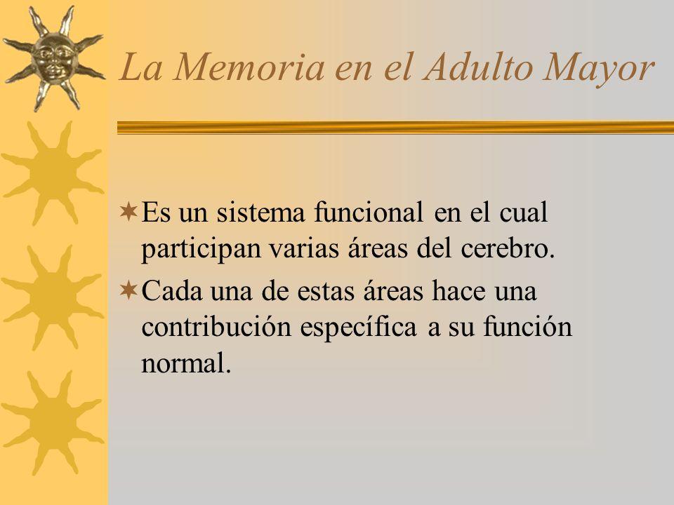 La Memoria en el Adulto Mayor Es un sistema funcional en el cual participan varias áreas del cerebro. Cada una de estas áreas hace una contribución es