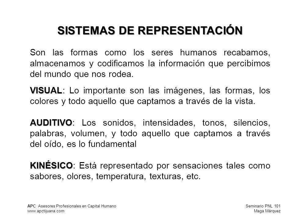 Seminario PNL 101 Maga Márquez APC Asesores Profesionales en Capital Humano www.apctijuana.com SISTEMAS DE REPRESENTACIÓN Son las formas como los seres humanos recabamos, almacenamos y codificamos la información que percibimos del mundo que nos rodea.