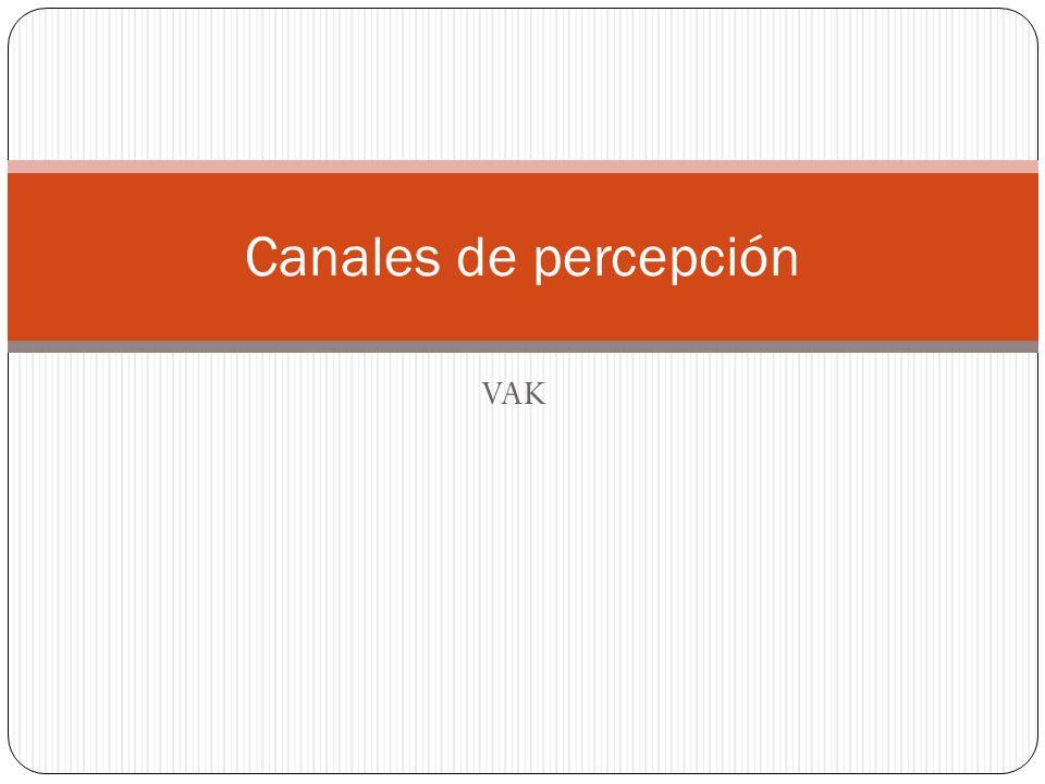 VAK Canales de percepción