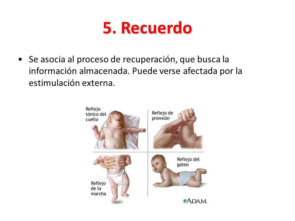 5. Recuerdo Se asocia al proceso de recuperación, que busca la información almacenada. Puede verse afectada por la estimulación externa.