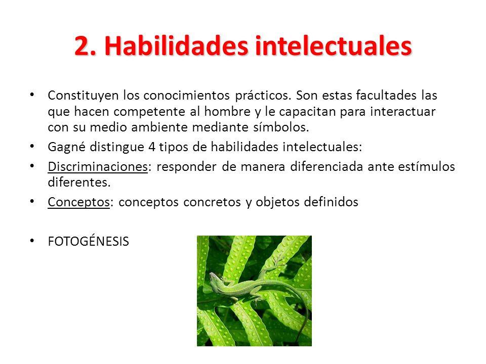 2. Habilidades intelectuales Constituyen los conocimientos prácticos. Son estas facultades las que hacen competente al hombre y le capacitan para inte