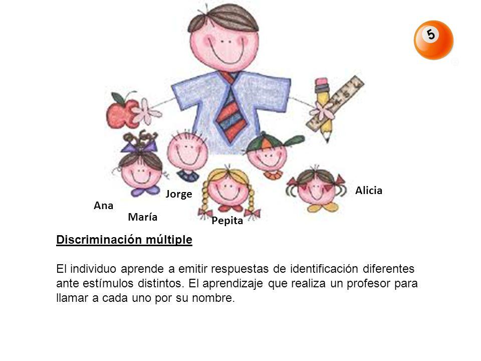 Discriminación múltiple El individuo aprende a emitir respuestas de identificación diferentes ante estímulos distintos. El aprendizaje que realiza un