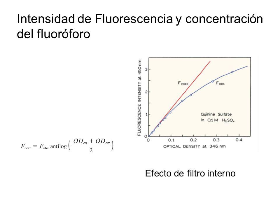 Intensidad de Fluorescencia y concentración del fluoróforo Efecto de filtro interno