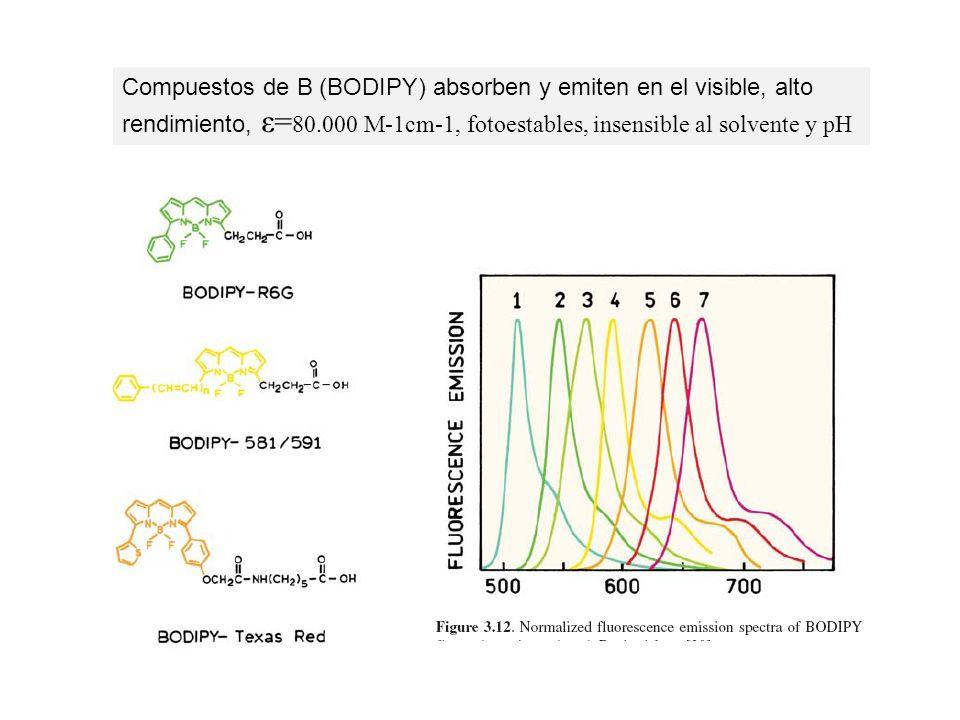 Compuestos de B (BODIPY) absorben y emiten en el visible, alto rendimiento, ε= 80.000 M-1cm-1, fotoestables, insensible al solvente y pH