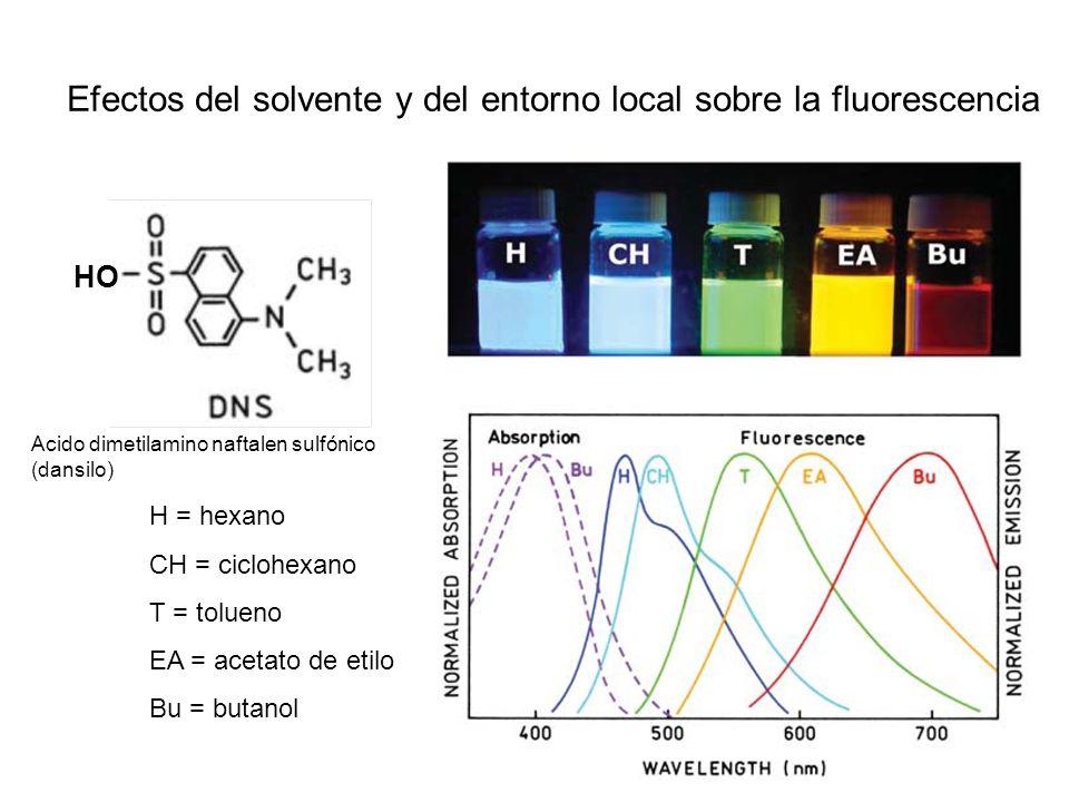 Efectos del solvente y del entorno local sobre la fluorescencia H = hexano CH = ciclohexano T = tolueno EA = acetato de etilo Bu = butanol HO Acido di