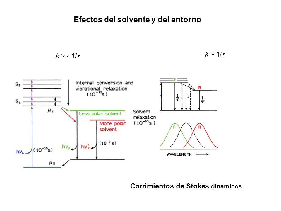 Efectos del solvente y del entorno k >> 1/ k 1/ Corrimientos de Stokes dinámicos