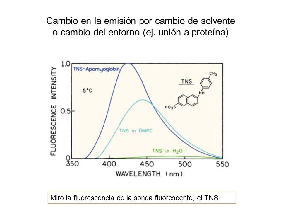 Cambio en la emisión por cambio de solvente o cambio del entorno (ej. unión a proteína) Miro la fluorescencia de la sonda fluorescente, el TNS