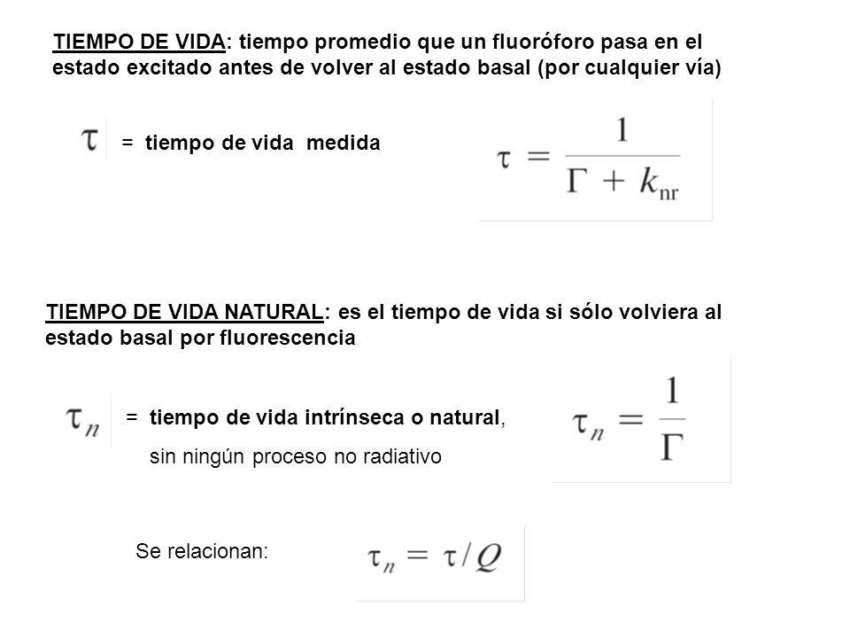 Parámetros a medir en fluorescencia Intensidad de fluorescencia (I SS ) Espectros de excitación y emisión (I F vs λ ) λ max (ex), λ max (em) Rendimiento cuántico de fluorescencia (Q) Vida media del fluoróforo ( ) Anisotropía (r) (tiempo de correlación rotacional) Eficiencia RET (E) (distancia de Föster)
