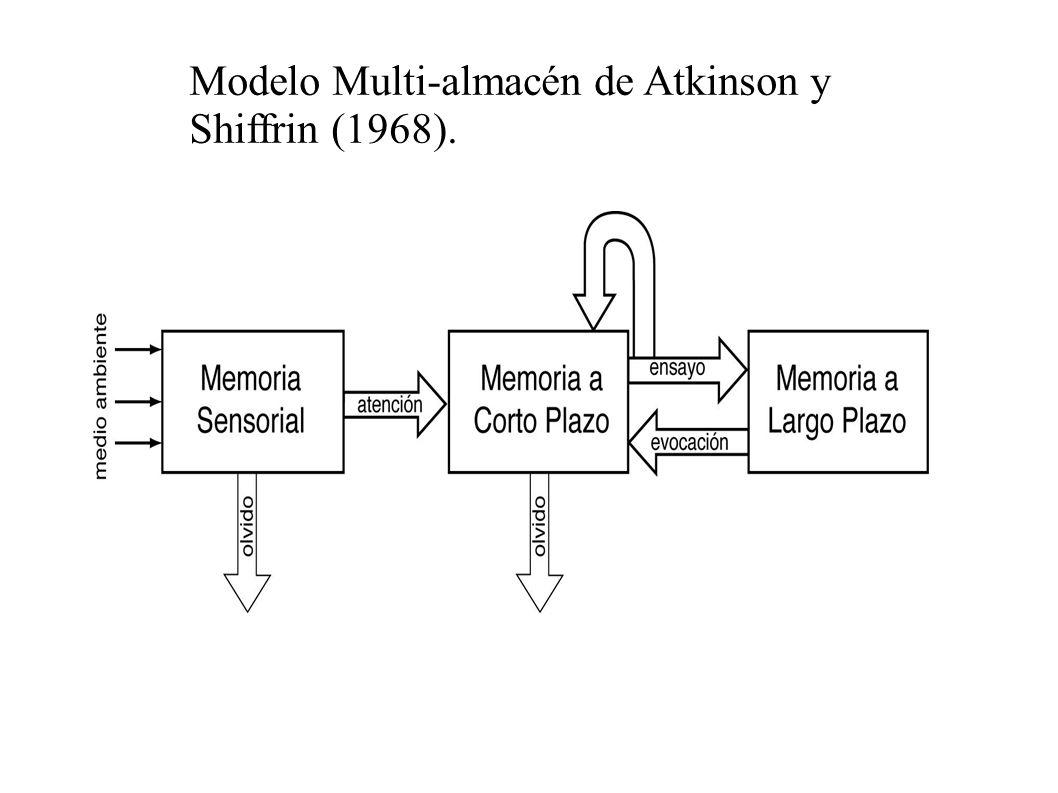 Memoria a corto plazo La memoria de corto plazo es un espacio de memoria utilizado para almacenar información temporalmente, generalmente entre algunos segundos y un minuto.