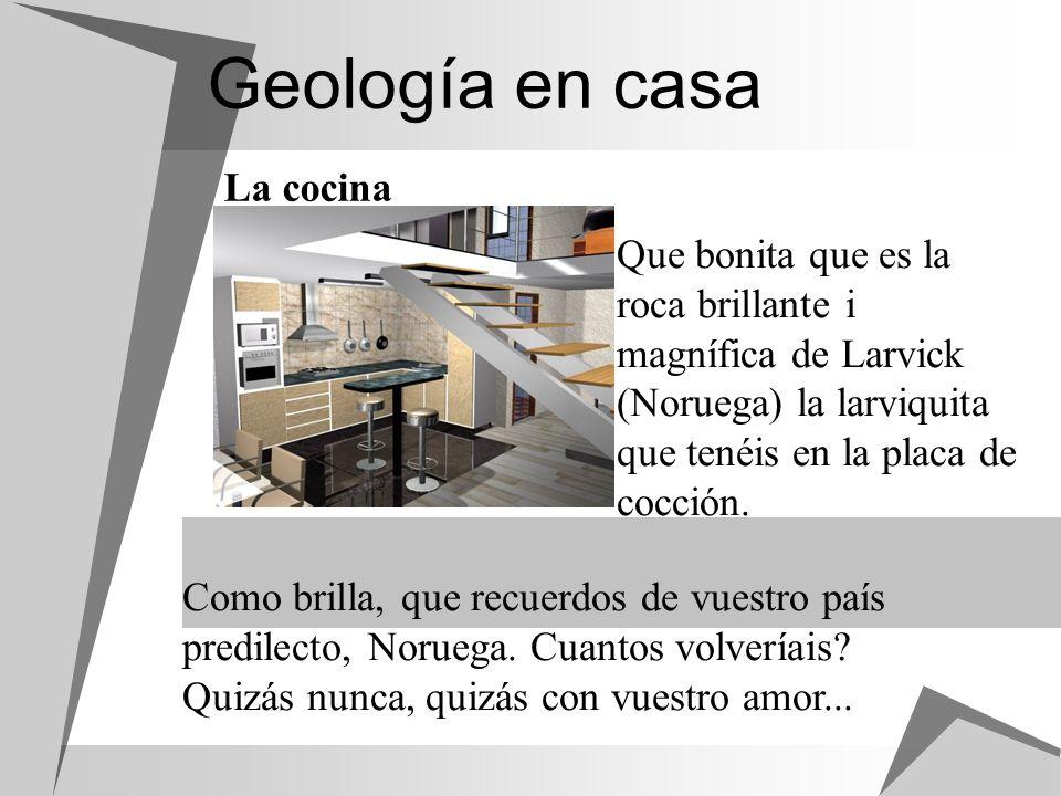 Geología en casa La cocina Que bonita que es la roca brillante i magnífica de Larvick (Noruega) la larviquita que tenéis en la placa de cocción. Como