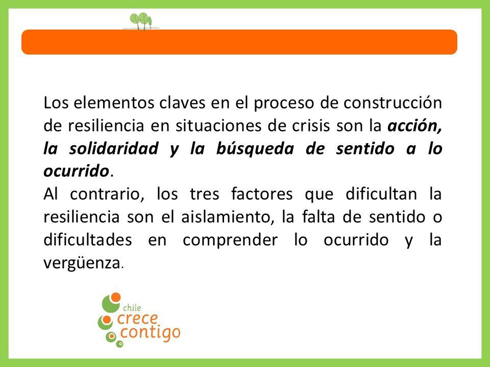 Los elementos claves en el proceso de construcción de resiliencia en situaciones de crisis son la acción, la solidaridad y la búsqueda de sentido a lo