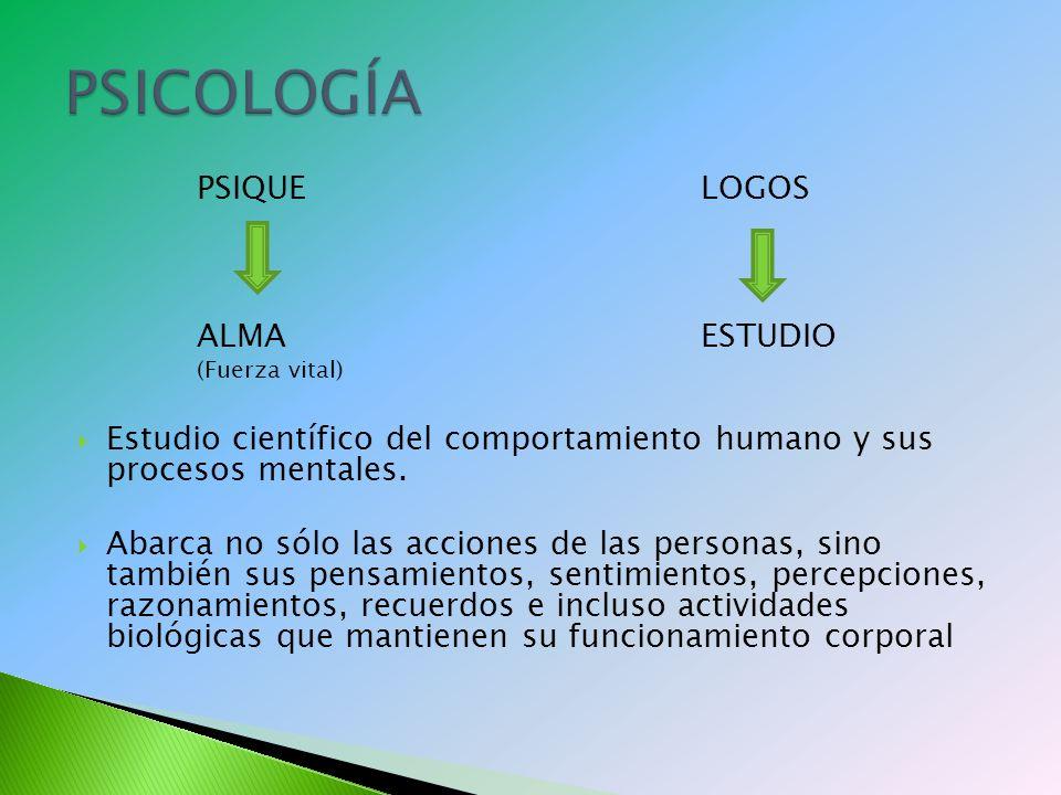 PSIQUELOGOS ALMAESTUDIO (Fuerza vital) Estudio científico del comportamiento humano y sus procesos mentales.