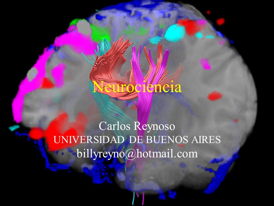 Neurociencia Carlos Reynoso UNIVERSIDAD DE BUENOS AIRES billyreyno@hotmail.com