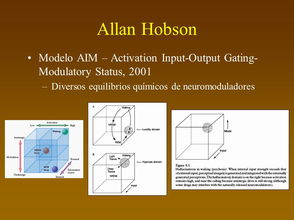 Allan Hobson Modelo AIM – Activation Input-Output Gating- Modulatory Status, 2001 –Diversos equilibrios químicos de neuromoduladores