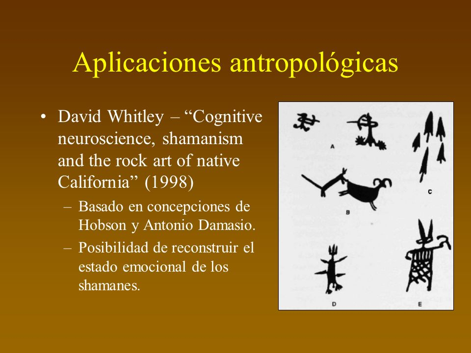 Aplicaciones antropológicas David Whitley – Cognitive neuroscience, shamanism and the rock art of native California (1998) –Basado en concepciones de