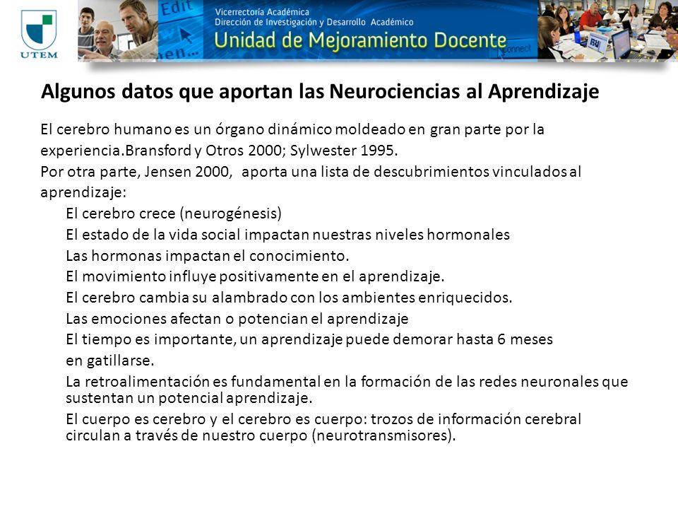 Algunos datos que aportan las Neurociencias al Aprendizaje El cerebro humano es un órgano dinámico moldeado en gran parte por la experiencia.Bransford