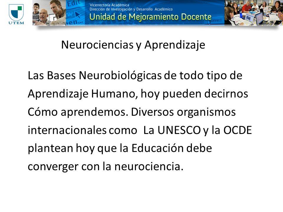 Neurociencias y Aprendizaje Las Bases Neurobiológicas de todo tipo de Aprendizaje Humano, hoy pueden decirnos Cómo aprendemos. Diversos organismos int