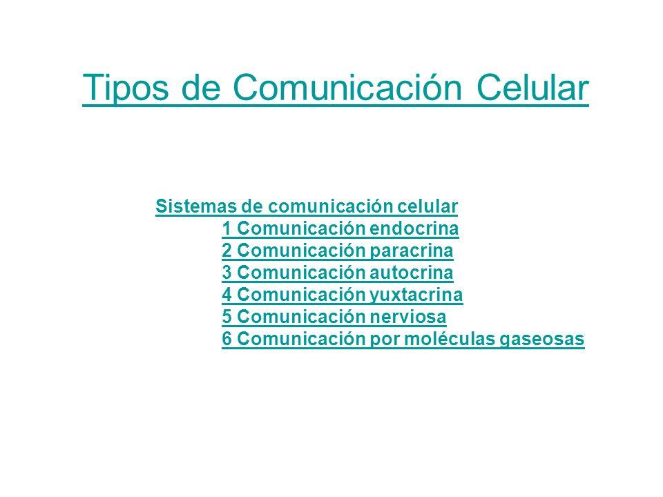 Sistemas de comunicación celular 1 Comunicación endocrina 2 Comunicación paracrina 3 Comunicación autocrina 4 Comunicación yuxtacrina 5 Comunicación nerviosa 6 Comunicación por moléculas gaseosas Tipos de Comunicación Celular