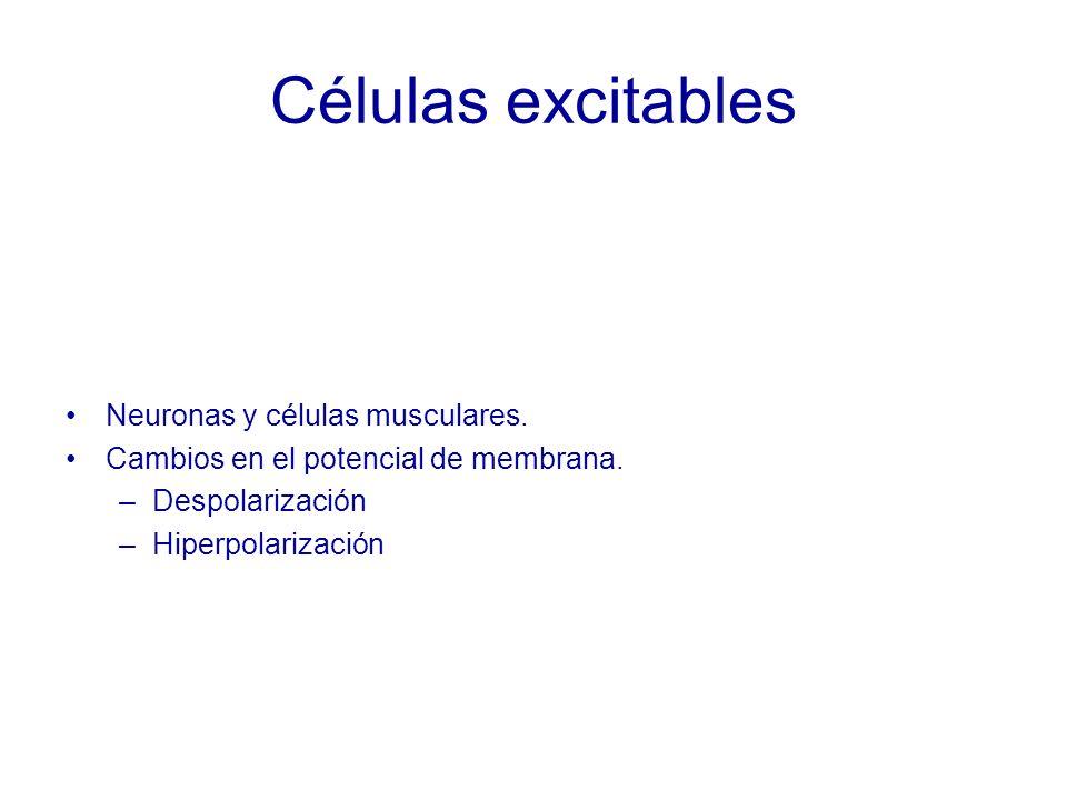 Células excitables Neuronas y células musculares.Cambios en el potencial de membrana.