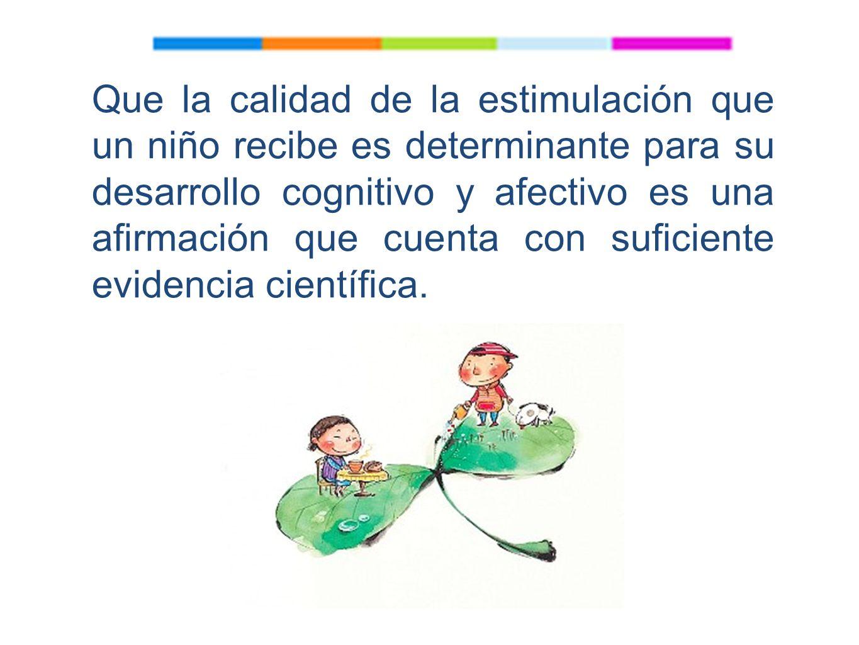 Que la calidad de la estimulación que un niño recibe es determinante para su desarrollo cognitivo y afectivo es una afirmación que cuenta con suficiente evidencia científica.