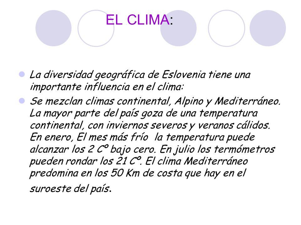EL CLIMA: La diversidad geográfica de Eslovenia tiene una importante influencia en el clima: Se mezclan climas continental, Alpino y Mediterráneo. La