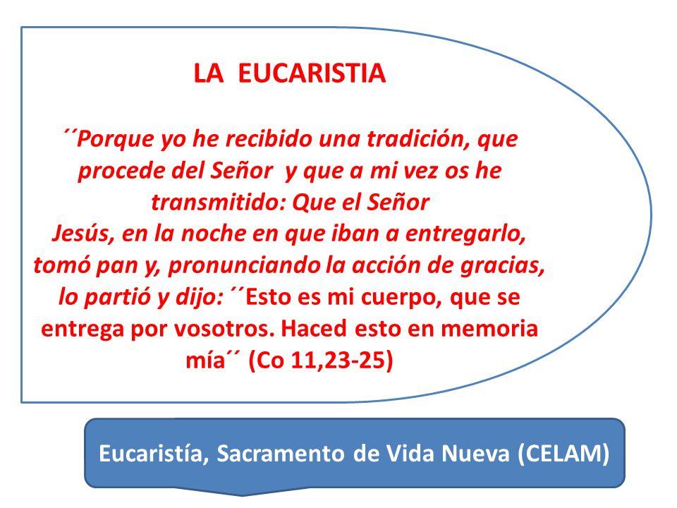 LA EUCARISTIA ´´Porque yo he recibido una tradición, que procede del Señor y que a mi vez os he transmitido: Que el Señor Jesús, en la noche en que iban a entregarlo, tomó pan y, pronunciando la acción de gracias, lo partió y dijo: ´´Esto es mi cuerpo, que se entrega por vosotros.