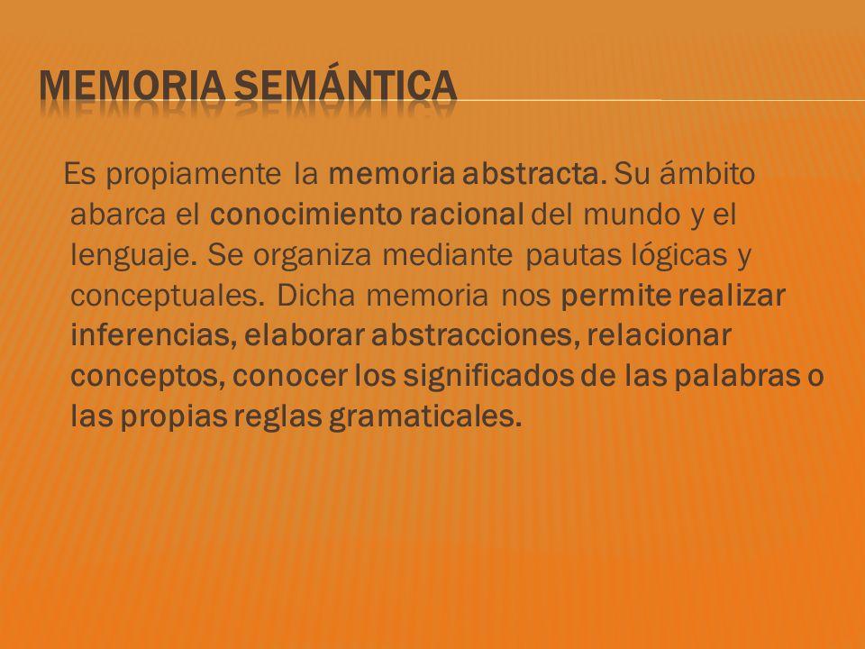Es propiamente la memoria abstracta. Su ámbito abarca el conocimiento racional del mundo y el lenguaje. Se organiza mediante pautas lógicas y conceptu