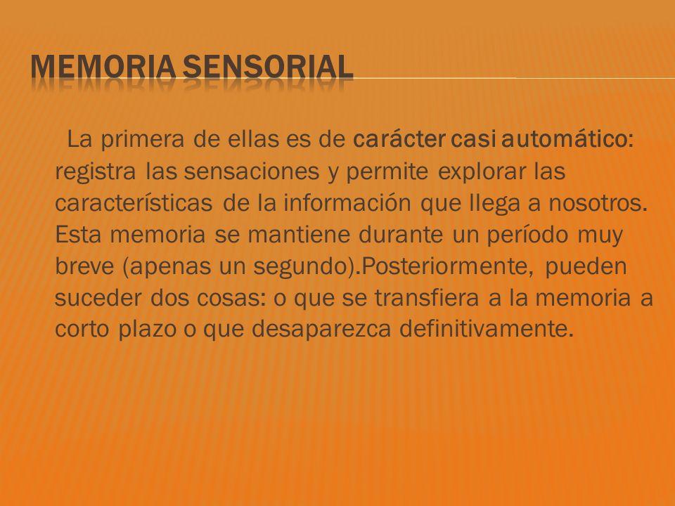 La primera de ellas es de carácter casi automático: registra las sensaciones y permite explorar las características de la información que llega a noso