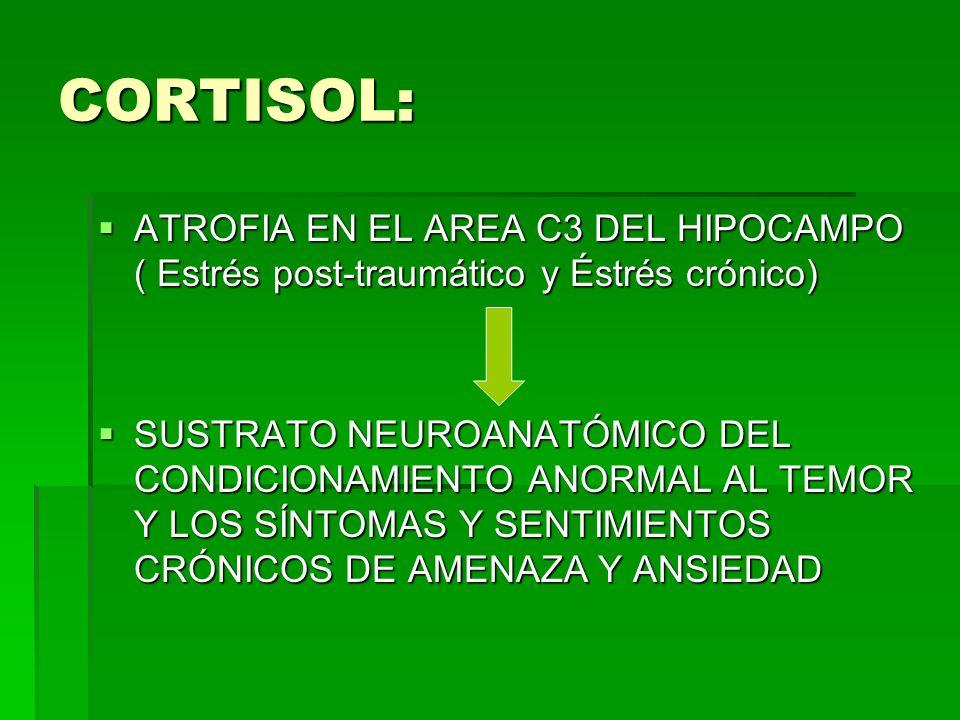 CORTISOL: ATROFIA EN EL AREA C3 DEL HIPOCAMPO ( Estrés post-traumático y Éstrés crónico) ATROFIA EN EL AREA C3 DEL HIPOCAMPO ( Estrés post-traumático