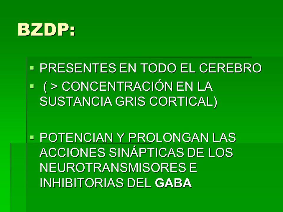 BZDP: PRESENTES EN TODO EL CEREBRO PRESENTES EN TODO EL CEREBRO ( > CONCENTRACIÓN EN LA SUSTANCIA GRIS CORTICAL) ( > CONCENTRACIÓN EN LA SUSTANCIA GRI