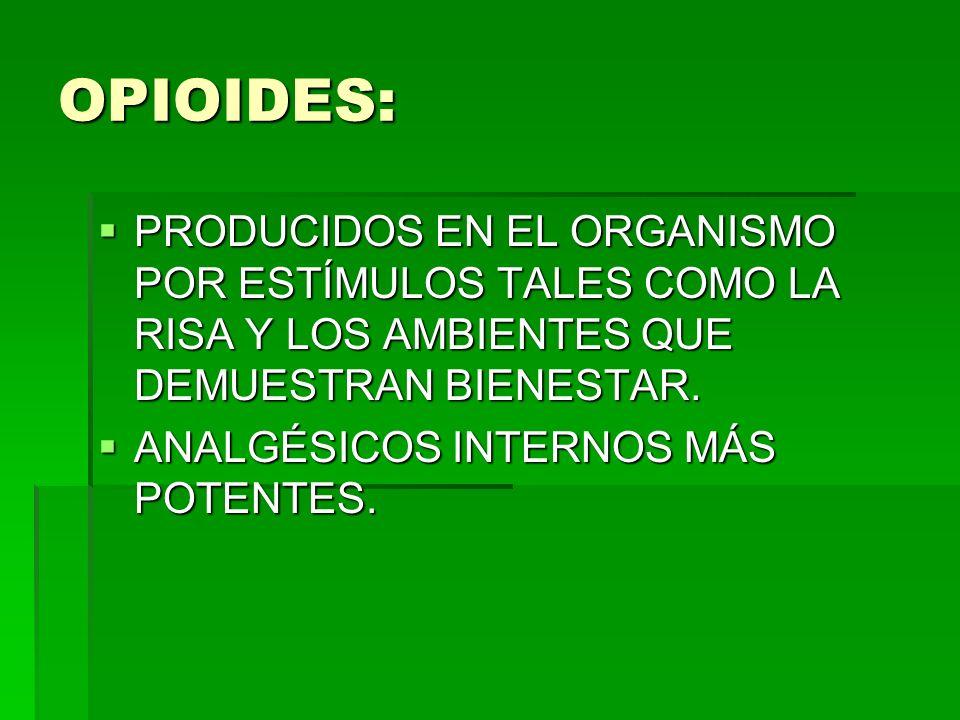 OPIOIDES: PRODUCIDOS EN EL ORGANISMO POR ESTÍMULOS TALES COMO LA RISA Y LOS AMBIENTES QUE DEMUESTRAN BIENESTAR. PRODUCIDOS EN EL ORGANISMO POR ESTÍMUL