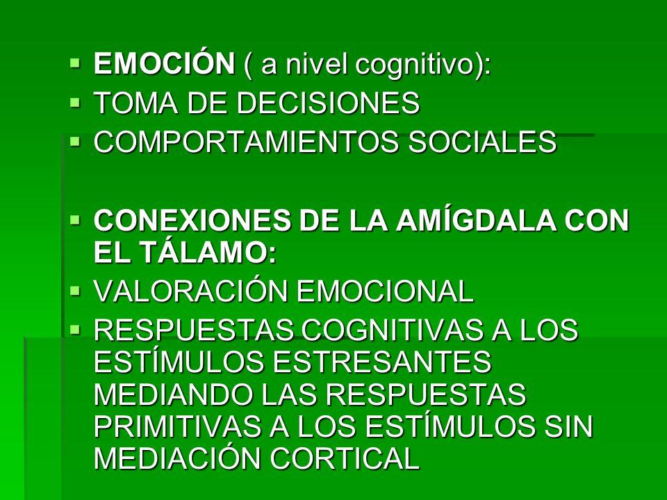 EMOCIÓN ( a nivel cognitivo): EMOCIÓN ( a nivel cognitivo): TOMA DE DECISIONES TOMA DE DECISIONES COMPORTAMIENTOS SOCIALES COMPORTAMIENTOS SOCIALES CO