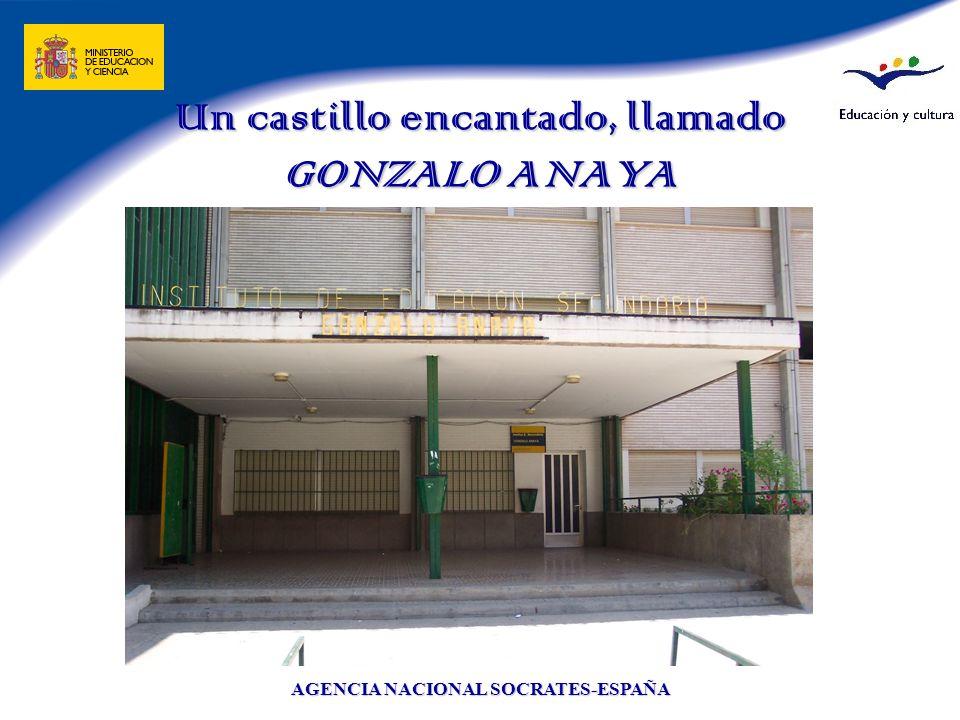 AGENCIA NACIONAL SOCRATES-ESPAÑA Un castillo encantado, llamado GONZALO ANAYA