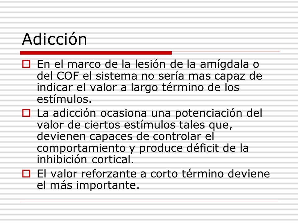 Adicción En el marco de la lesión de la amígdala o del COF el sistema no sería mas capaz de indicar el valor a largo término de los estímulos. La adic