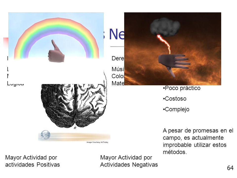 Respuestas Neurológicas Electroencefalograma Mide cambios neurológicos.