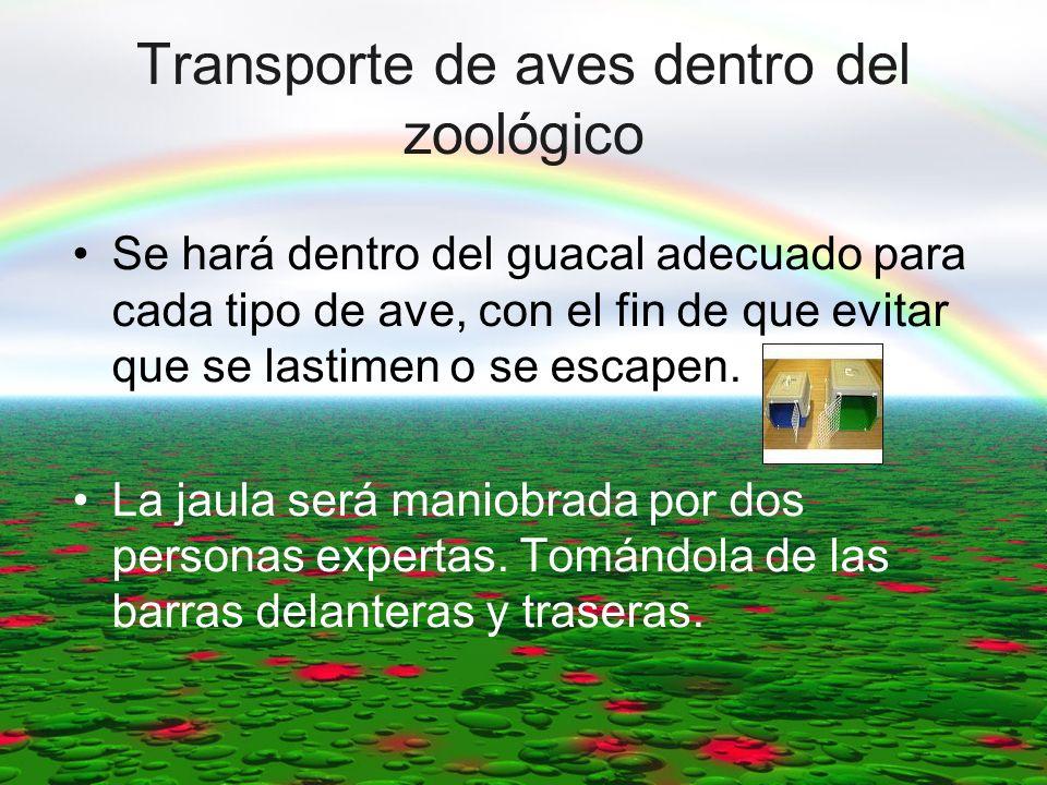 Transporte de aves dentro del zoológico Se hará dentro del guacal adecuado para cada tipo de ave, con el fin de que evitar que se lastimen o se escape