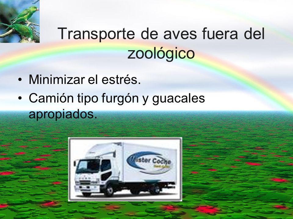 Transporte de aves fuera del zoológico Minimizar el estrés. Camión tipo furgón y guacales apropiados.