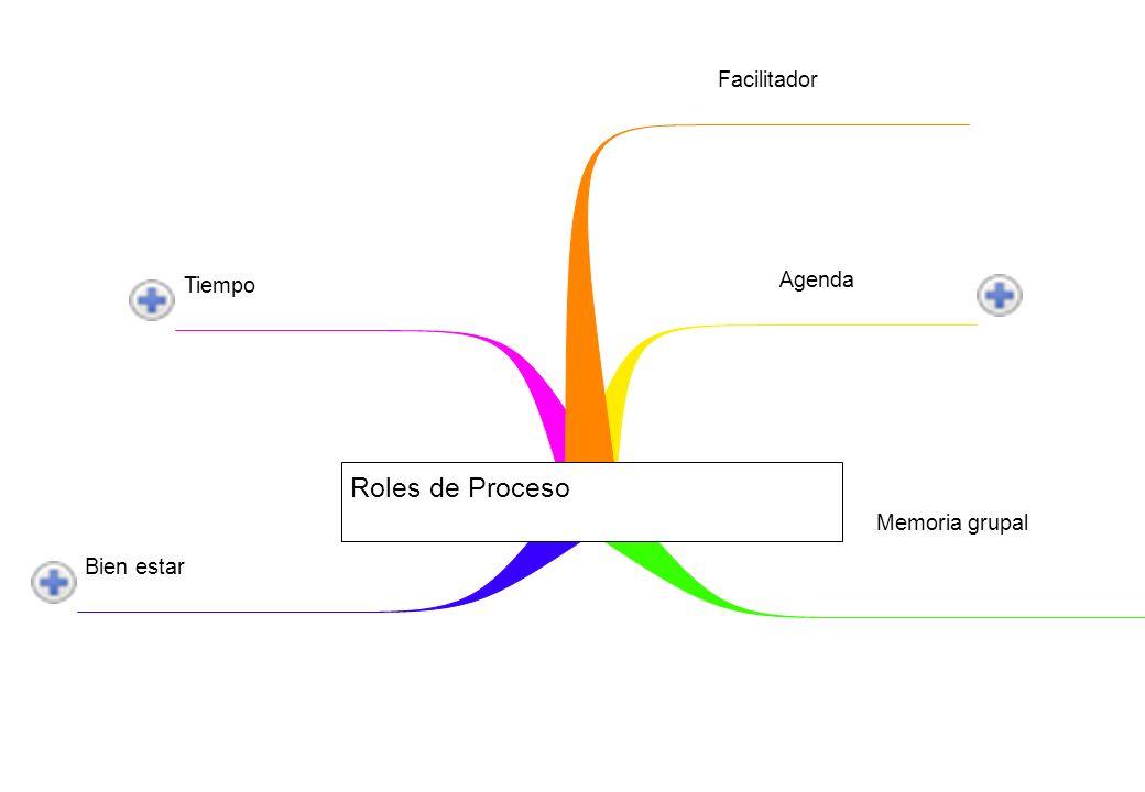 Tiempo Bien estar Memoria grupal Agenda Facilitador Roles de Proceso