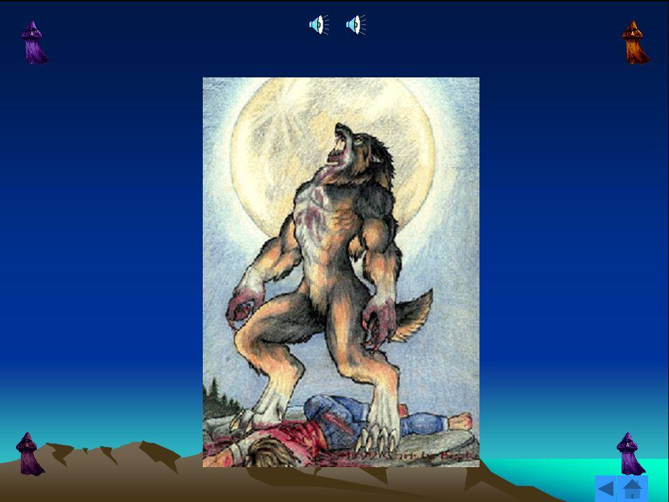 Vayamos a la parte más divertida y folklórica. Se dice que una persona se convierte en hombre-lobo cuando es mordido por otro hombre-lobo, o por un lo