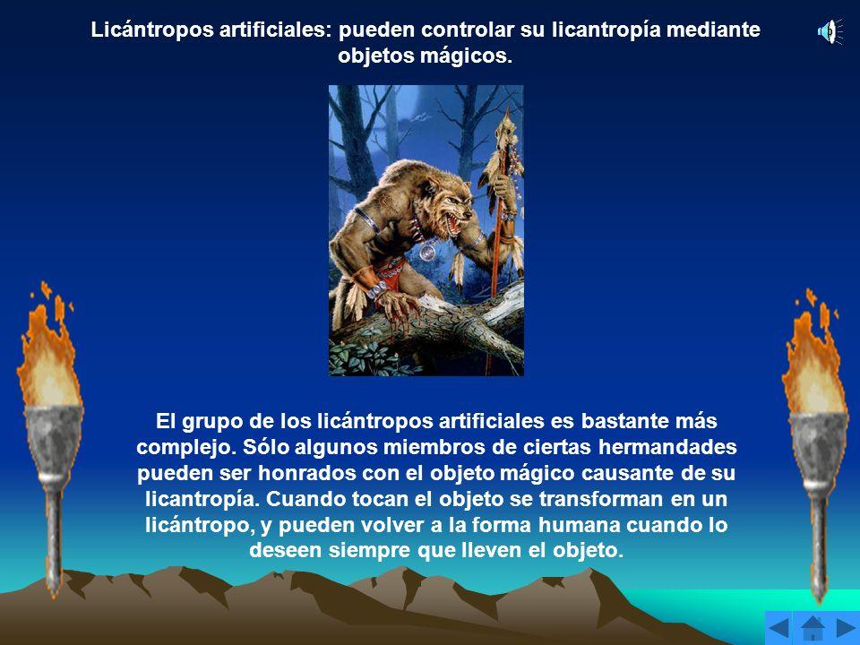 Licántropos infectados: su licantropía aparece al ser heridos por un licántropo auténtico. Un licántropo infectado que adopta la forma híbrida ve como