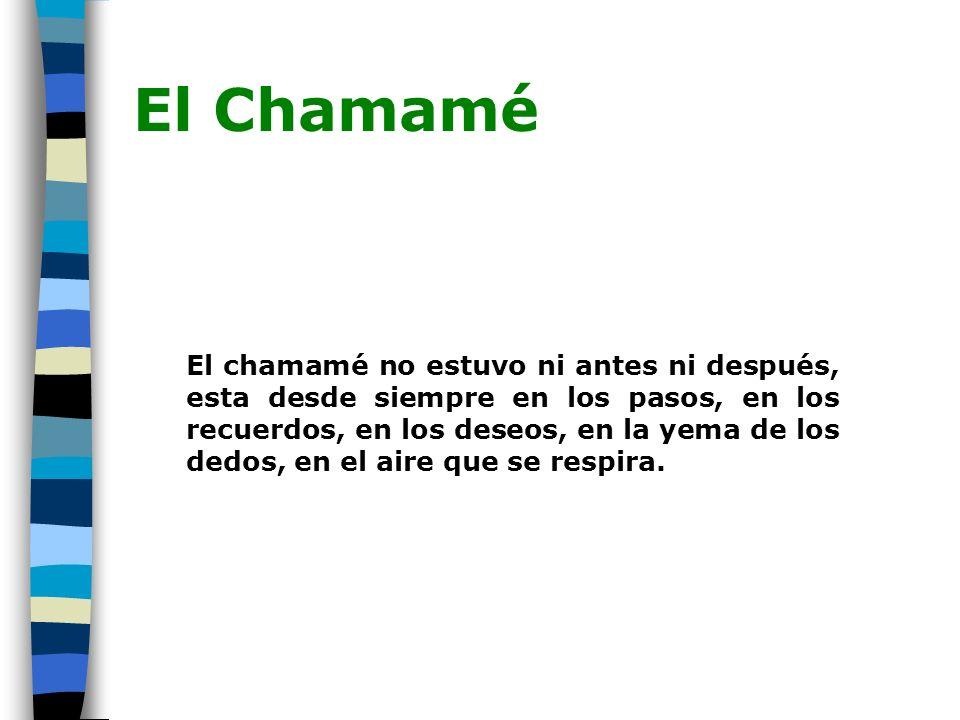El Chamamé El chamamé no estuvo ni antes ni después, esta desde siempre en los pasos, en los recuerdos, en los deseos, en la yema de los dedos, en el aire que se respira.